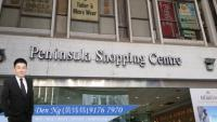 For Sale : Peninsula Shopping Centre